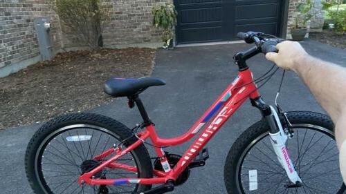 """Schwinn Cimarron Red 20"""" Wheels"""